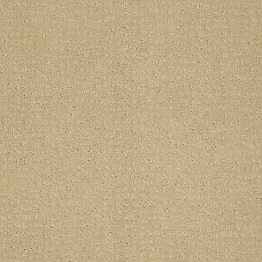 STAINMASTER Undisputed Active Family Chamomile Cut and Loop Carpet Sample