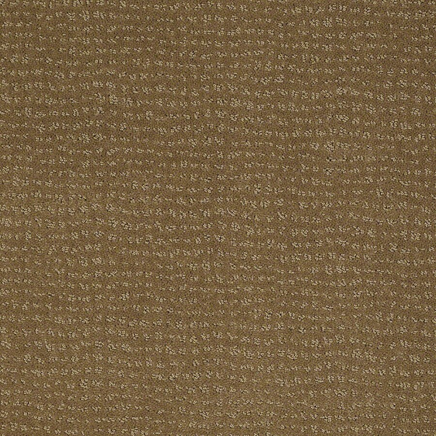 STAINMASTER Undisputed Active Family Medal Bronze Cut and Loop Carpet Sample