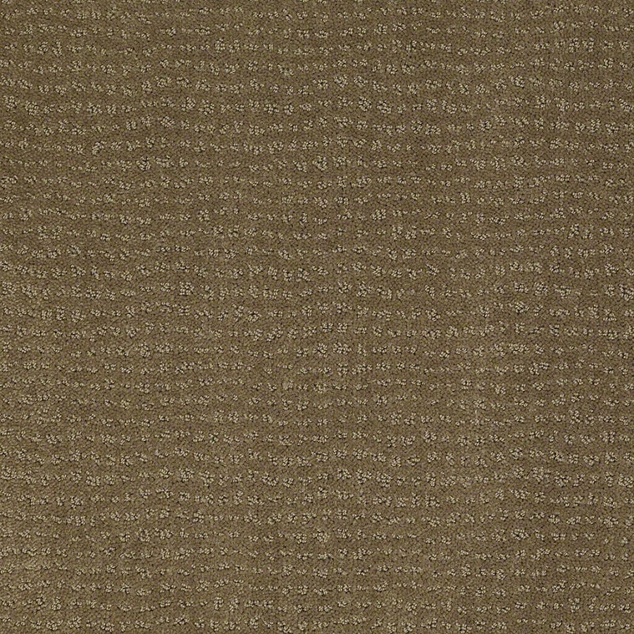 STAINMASTER Undisputed Active Family Safari Vest Cut and Loop Carpet Sample