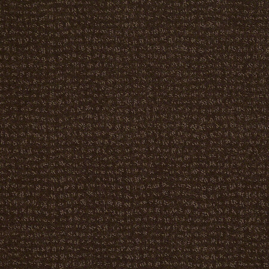 STAINMASTER Undisputed Active Family Cub Cut and Loop Carpet Sample