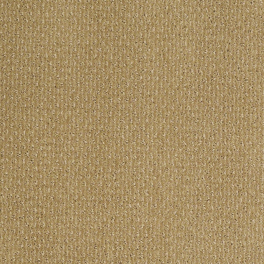 STAINMASTER St Thomas Active Family Summer Melon Cut and Loop Carpet Sample