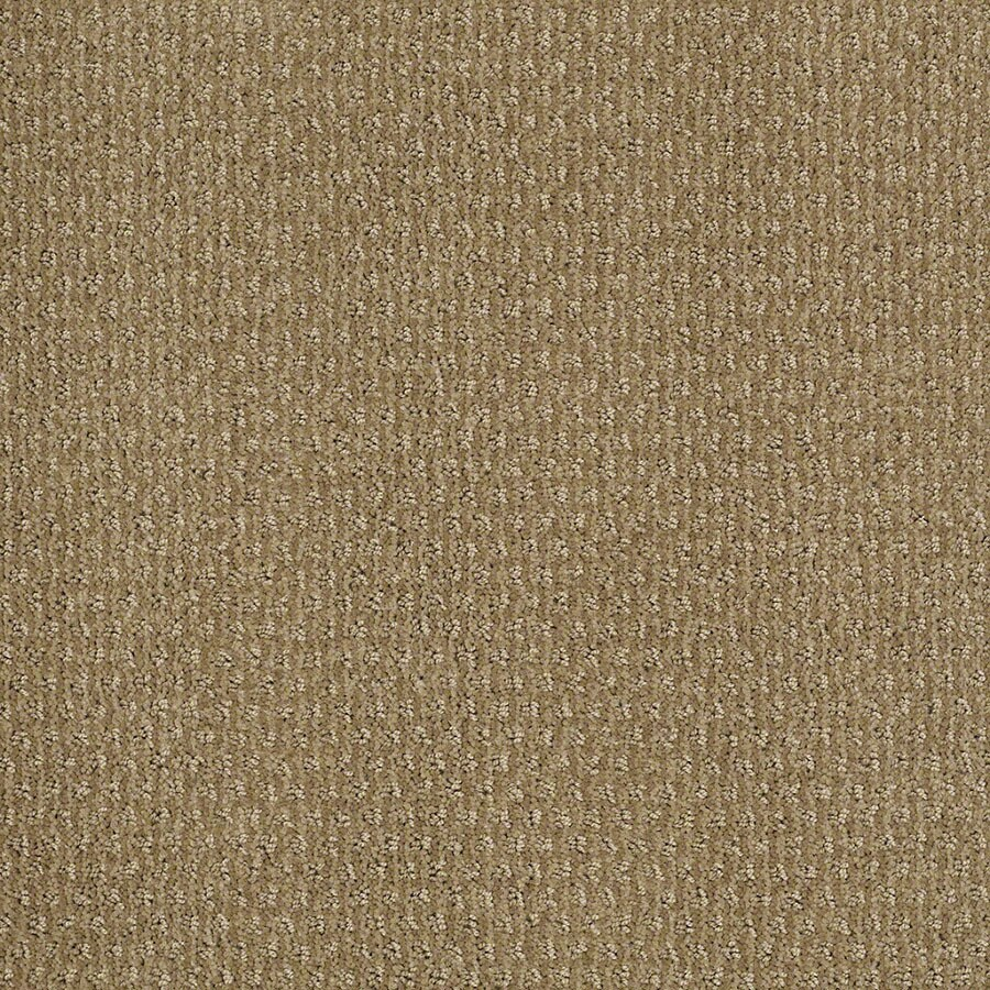 STAINMASTER St Thomas Active Family Sahara Sun Cut and Loop Carpet Sample