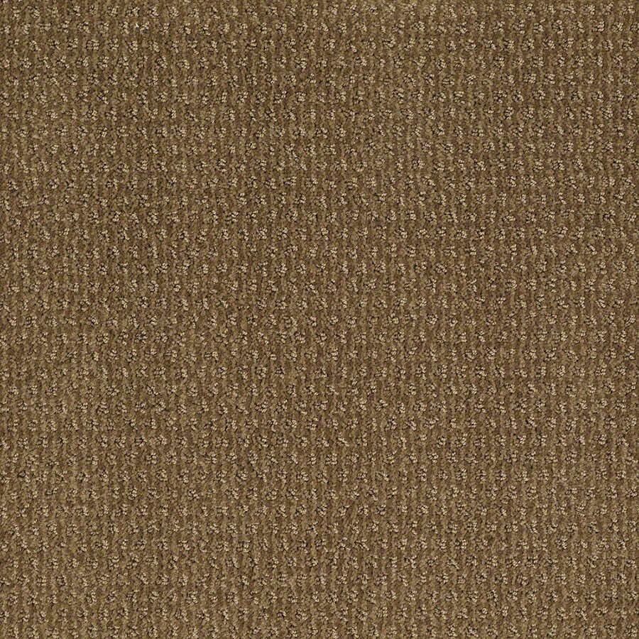 STAINMASTER St Thomas Active Family Medal Bronze Cut and Loop Carpet Sample