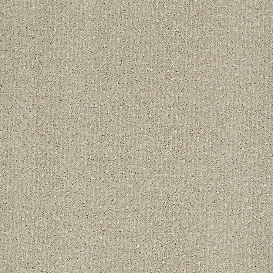 STAINMASTER St Thomas Active Family Oyster Cut and Loop Carpet Sample