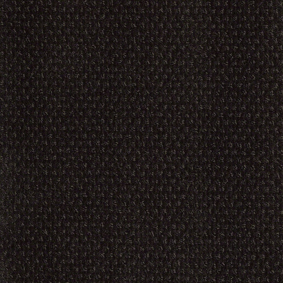 STAINMASTER St Thomas Active Family Meteorite Cut and Loop Carpet Sample