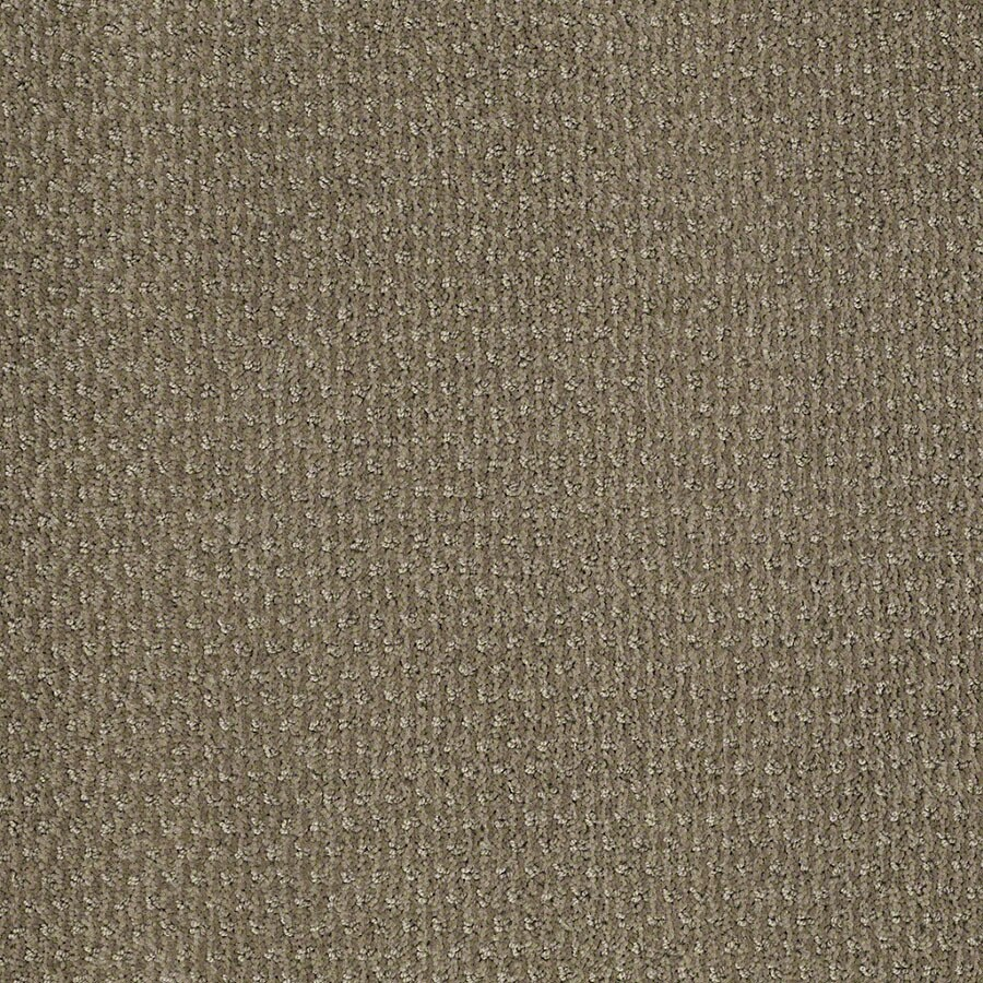 STAINMASTER St Thomas Active Family Greige Cut and Loop Carpet Sample