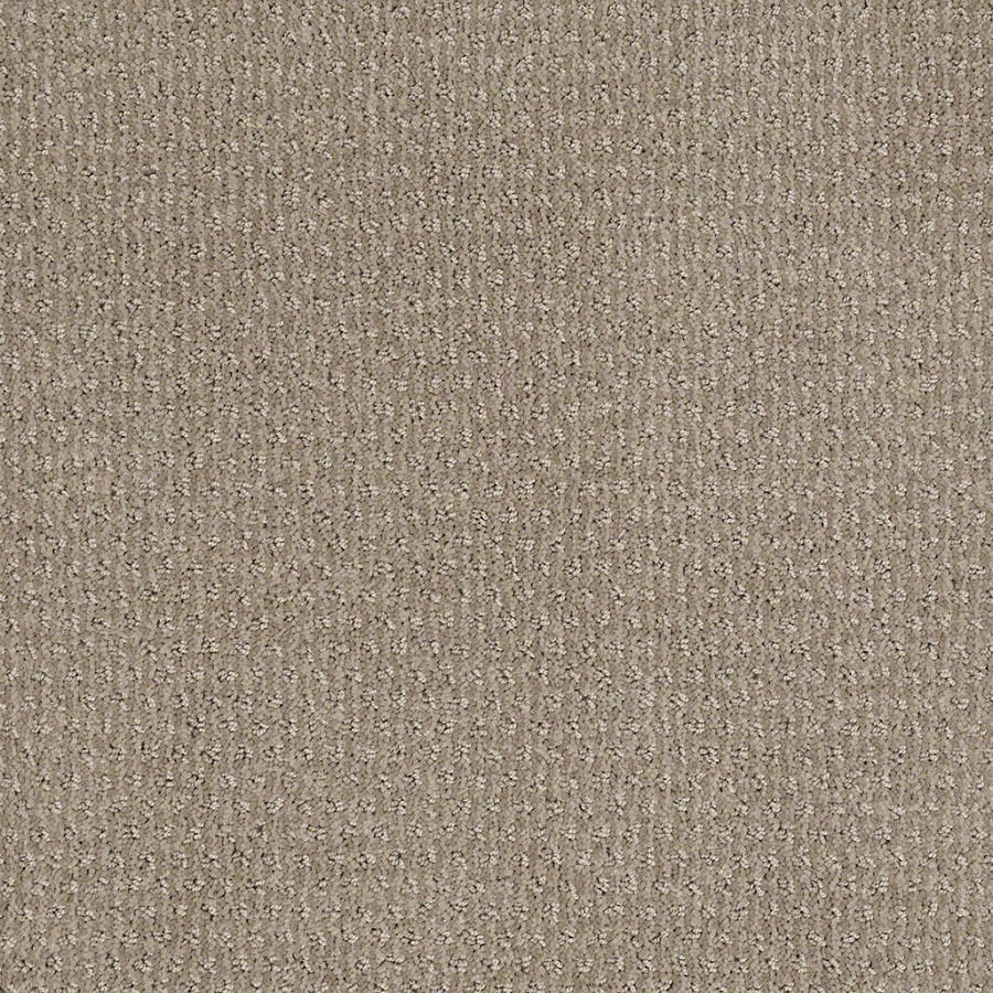 STAINMASTER St Thomas Active Family Cubist Gray Cut and Loop Carpet Sample