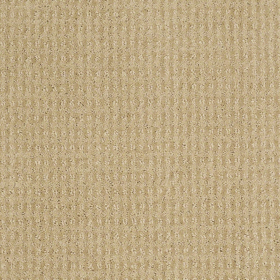 STAINMASTER St John Active Family Chamomile Cut and Loop Carpet Sample