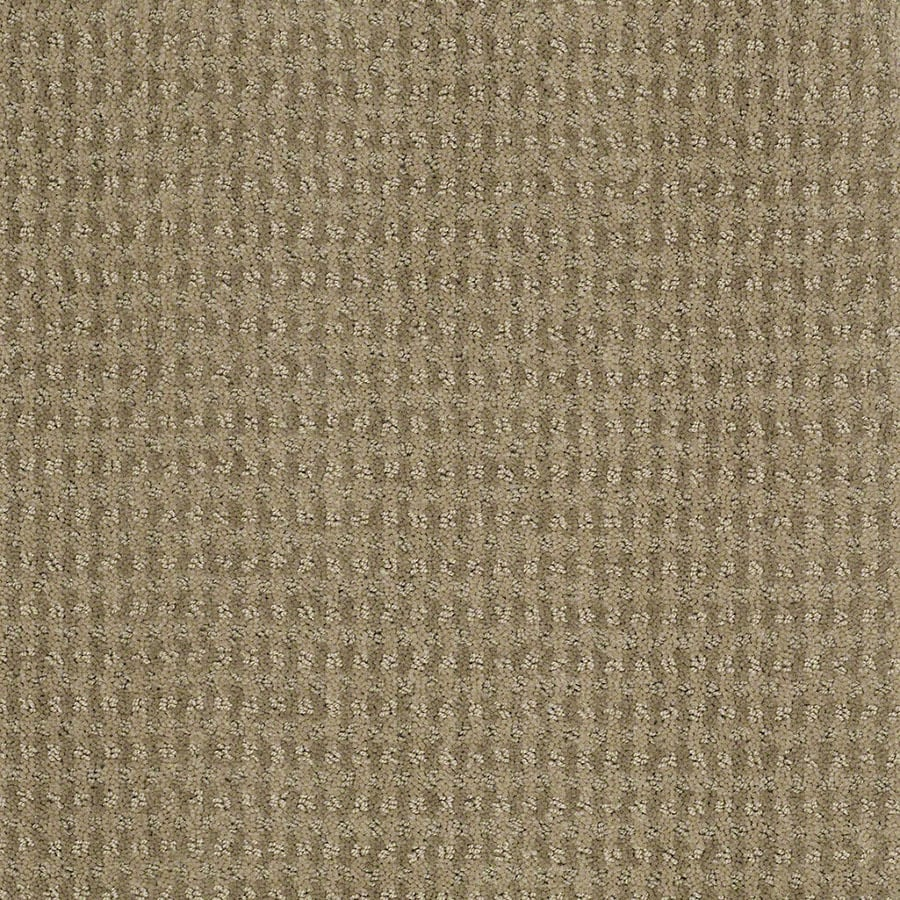 STAINMASTER St John Active Family Fennel Cut and Loop Carpet Sample