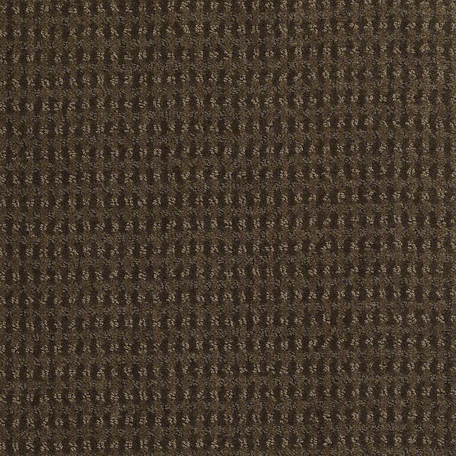STAINMASTER St John Active Family Shitake Cut and Loop Carpet Sample