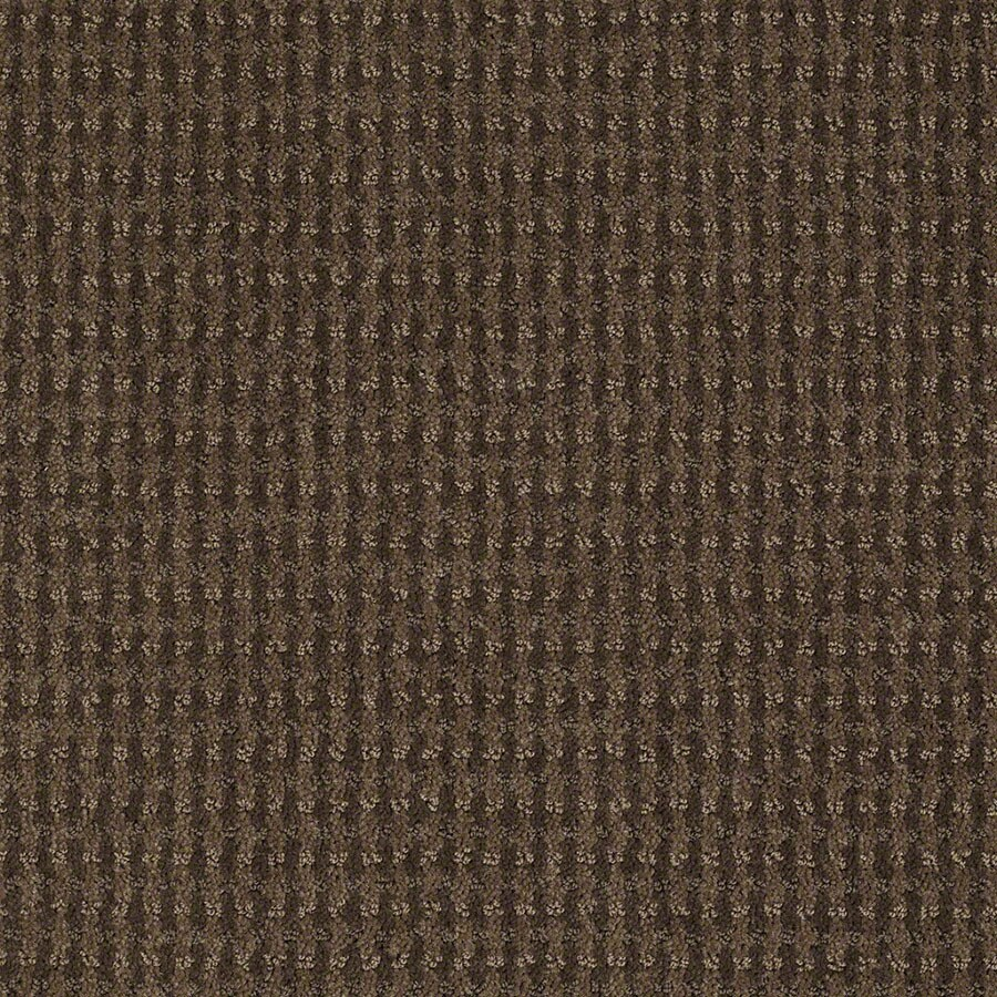 STAINMASTER St John Active Family Timberline Cut and Loop Carpet Sample