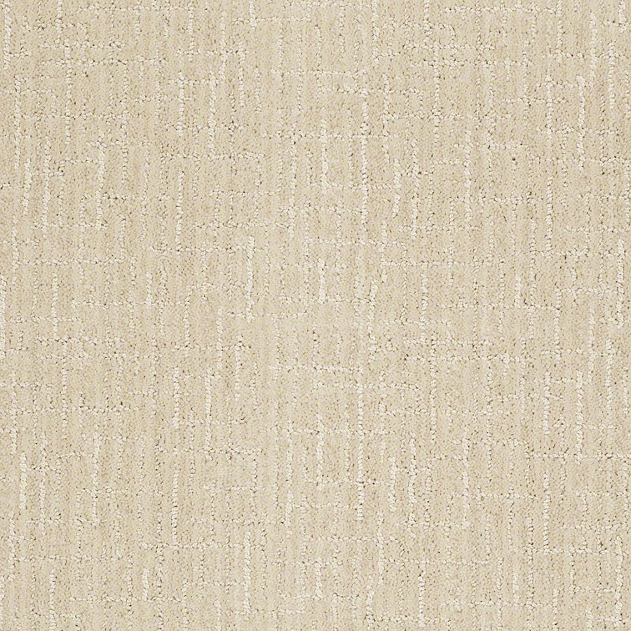 STAINMASTER Unquestionable Active Family Cameo Cut and Loop Carpet Sample