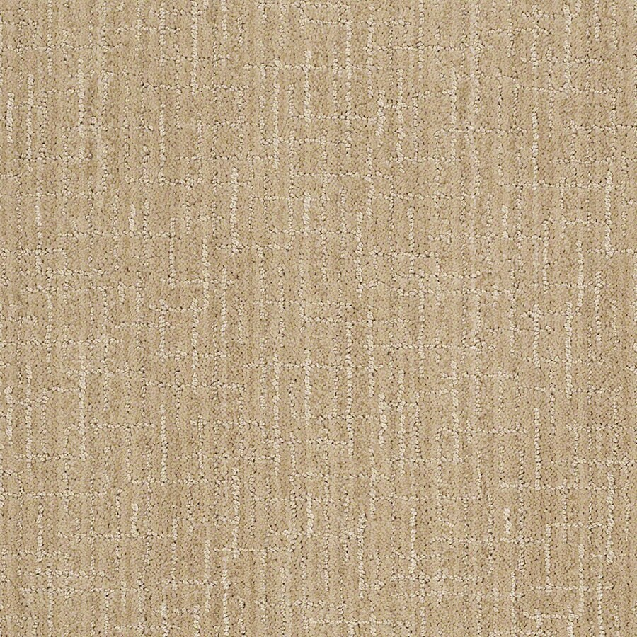 STAINMASTER Unquestionable Active Family Cashmere Sweatr Cut and Loop Carpet Sample