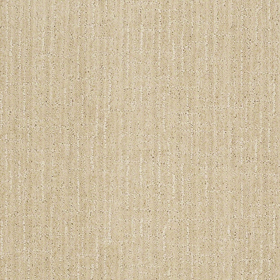 STAINMASTER Unquestionable Active Family Candleglow Cut and Loop Carpet Sample