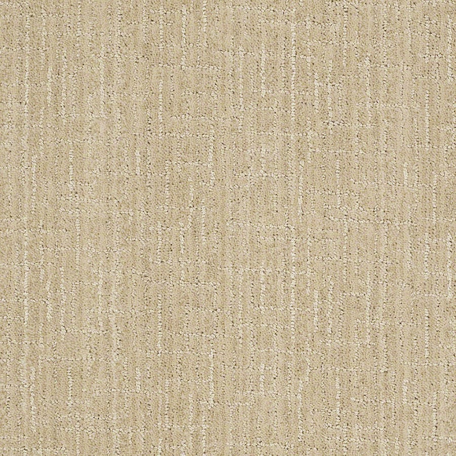 STAINMASTER Unquestionable Active Family Ivory Oats Cut and Loop Carpet Sample