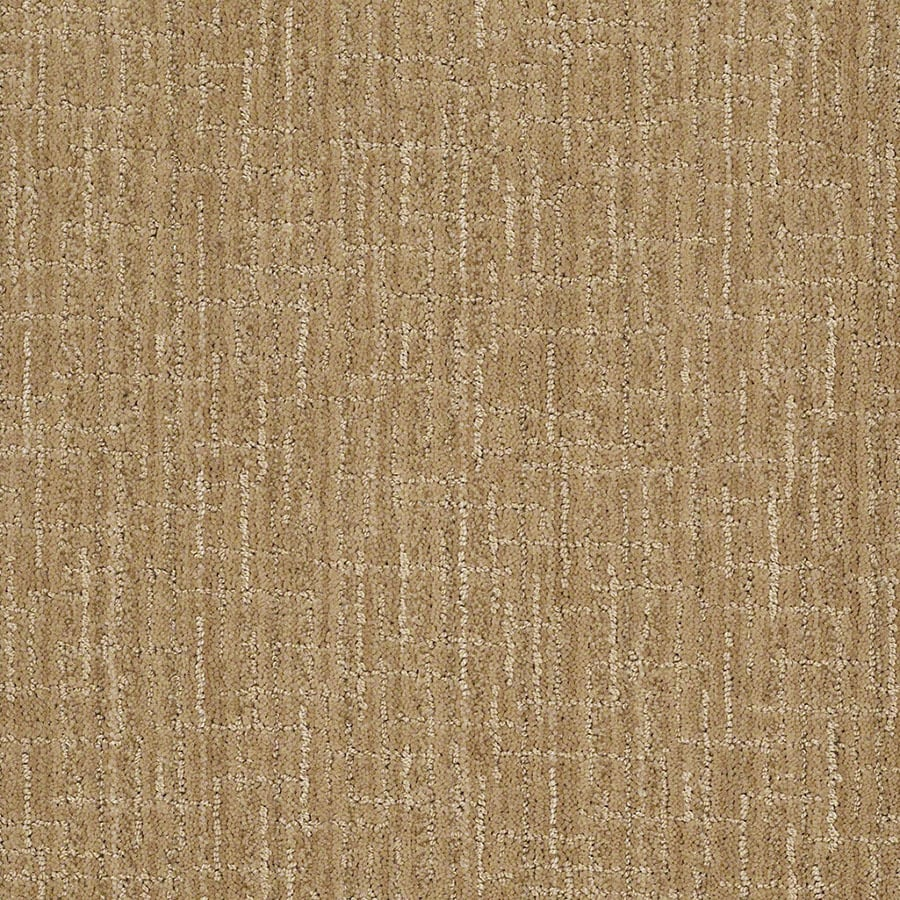 STAINMASTER Unquestionable Active Family Biscuit Cut and Loop Carpet Sample