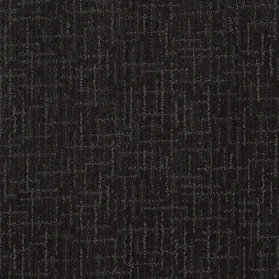 STAINMASTER Unquestionable Active Family Magic Night Cut and Loop Carpet Sample