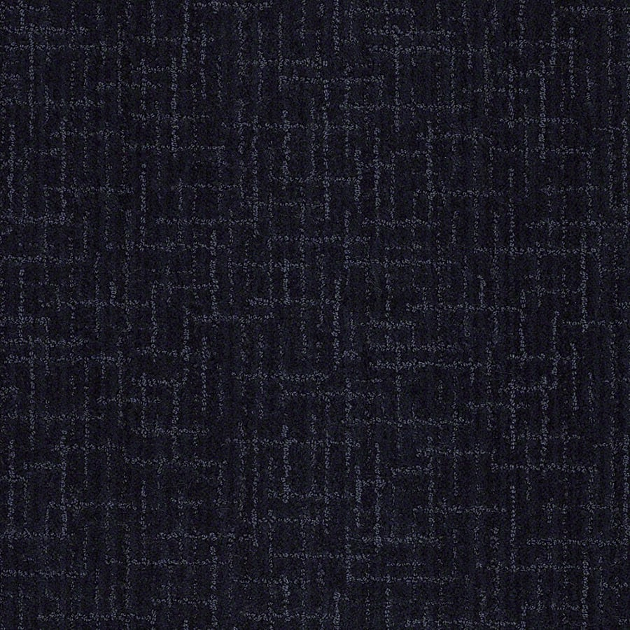 STAINMASTER Unquestionable Active Family Blueberry Muffn Cut and Loop Carpet Sample