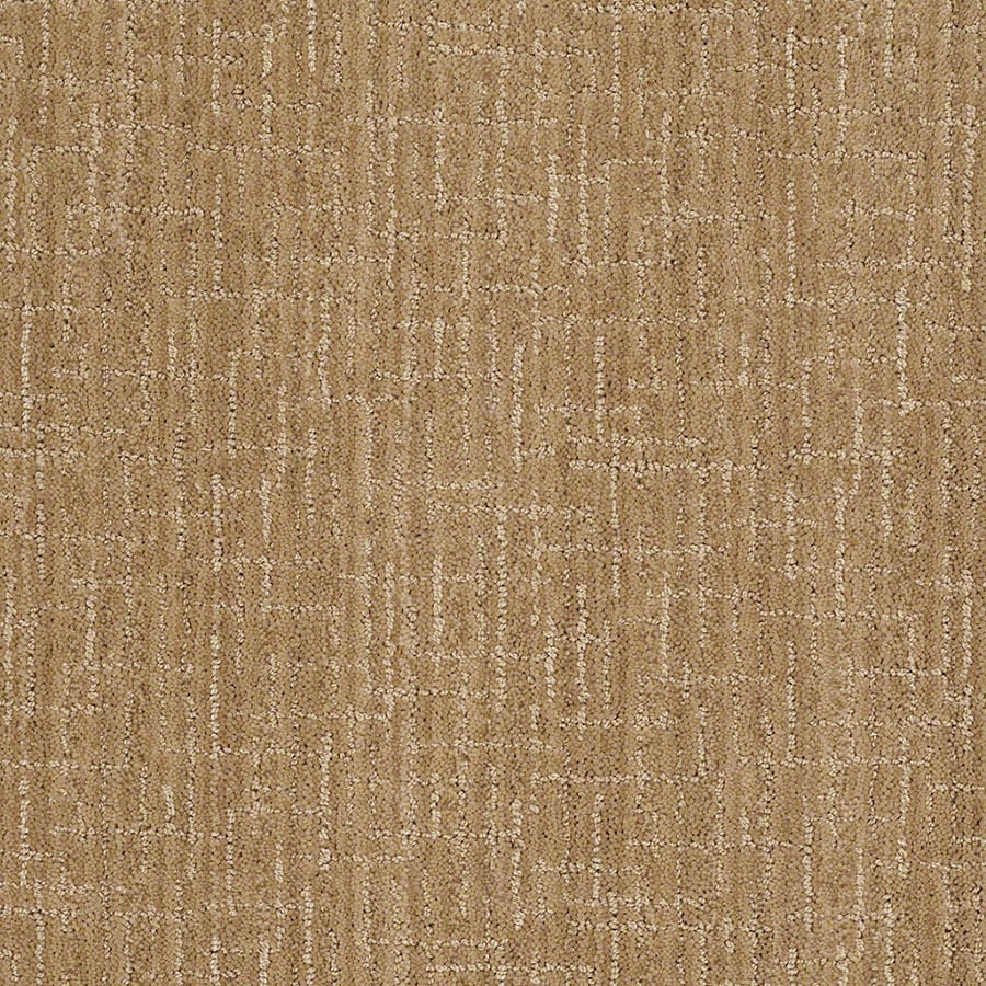 STAINMASTER Unquestionable Active Family Dover Plains Cut and Loop Carpet Sample