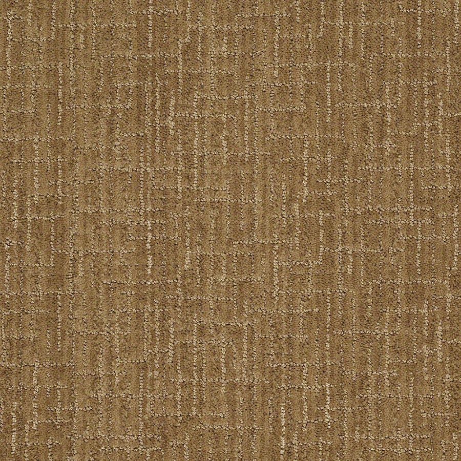 STAINMASTER Unquestionable Active Family French Horn Cut and Loop Carpet Sample