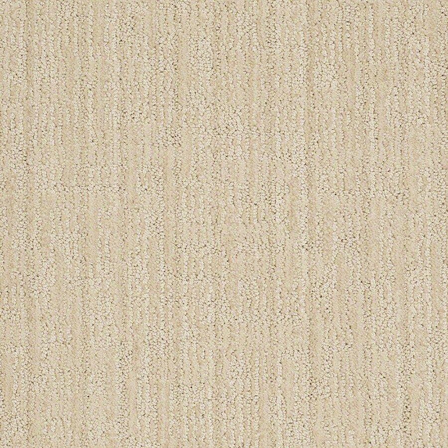 STAINMASTER Unmistakable Active Family Candleglow Cut and Loop Carpet Sample