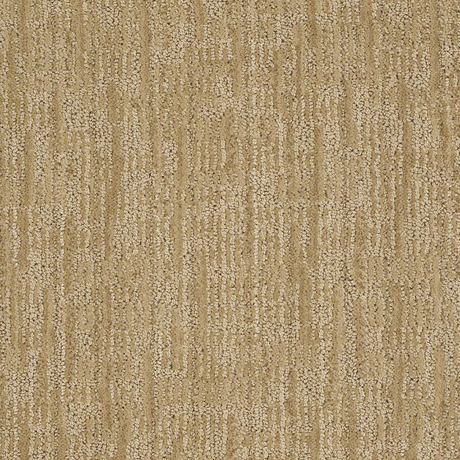 STAINMASTER Unmistakable Active Family Banana Split Cut and Loop Carpet Sample