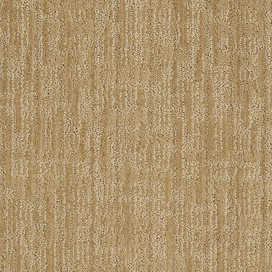 STAINMASTER Unmistakable Active Family Eggnog Cut and Loop Carpet Sample