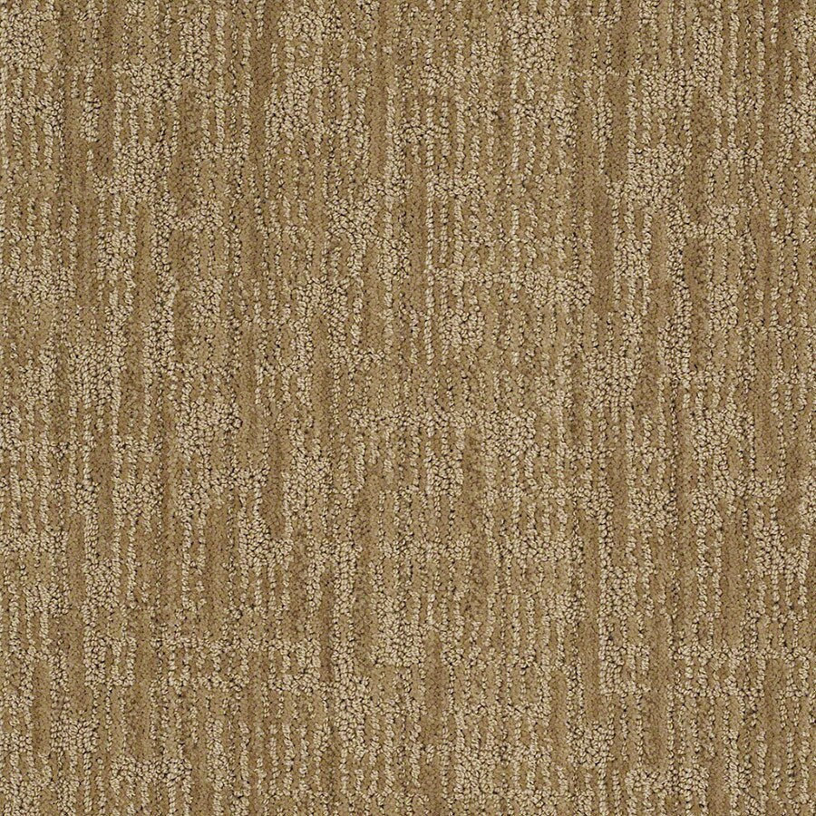 STAINMASTER Unmistakable Active Family Vintage Gold Cut and Loop Carpet Sample