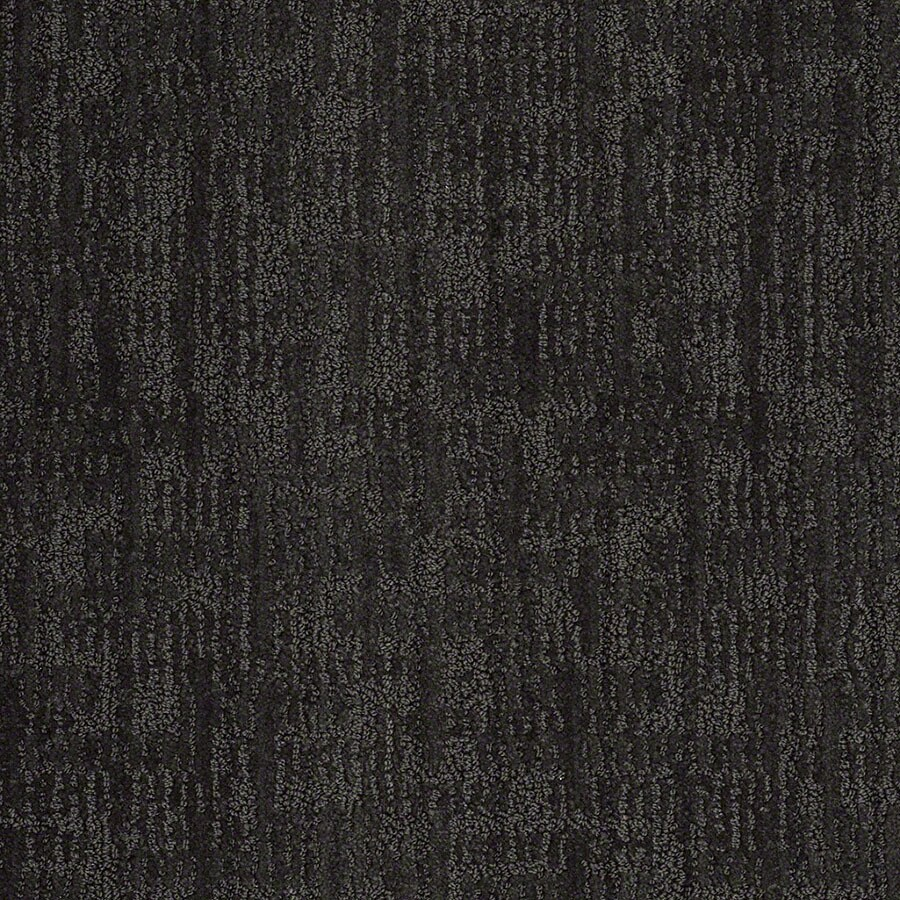 STAINMASTER Unmistakable Active Family Magic Night Cut and Loop Carpet Sample