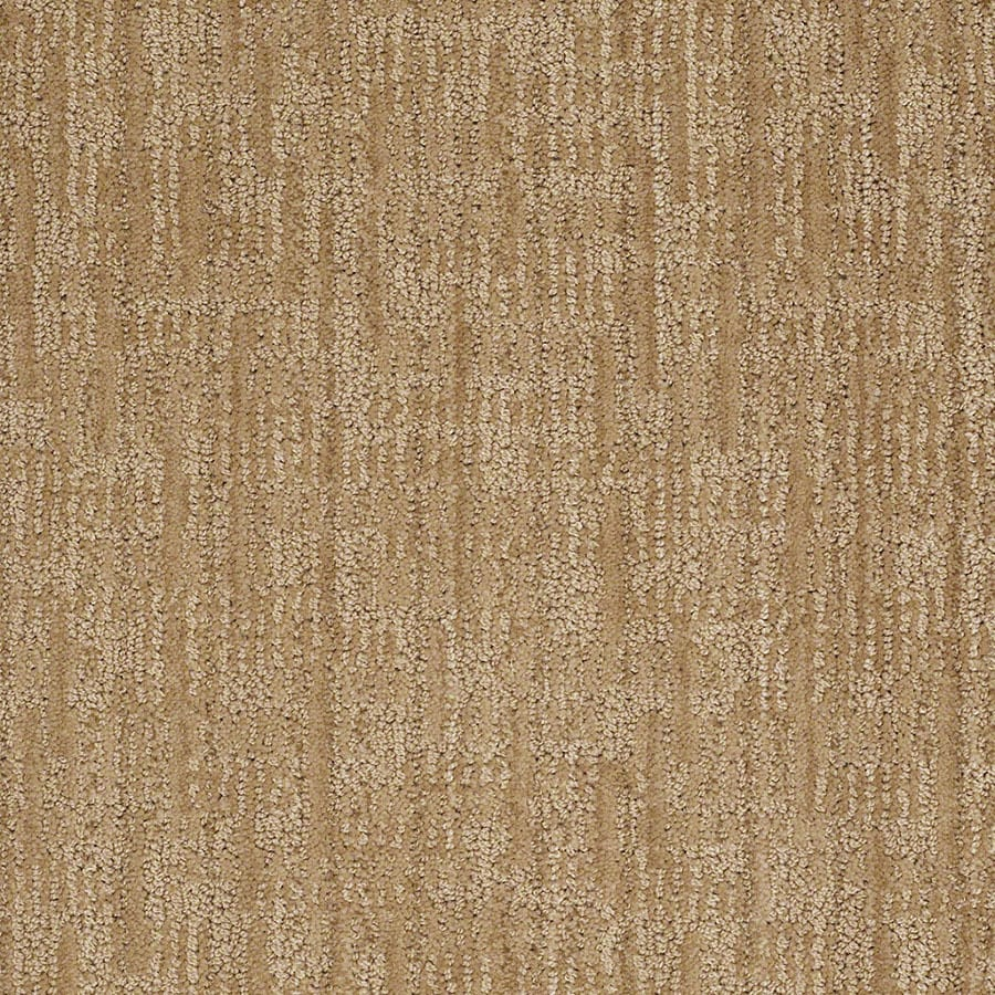 STAINMASTER Unmistakable Active Family Dover Plains Cut and Loop Carpet Sample