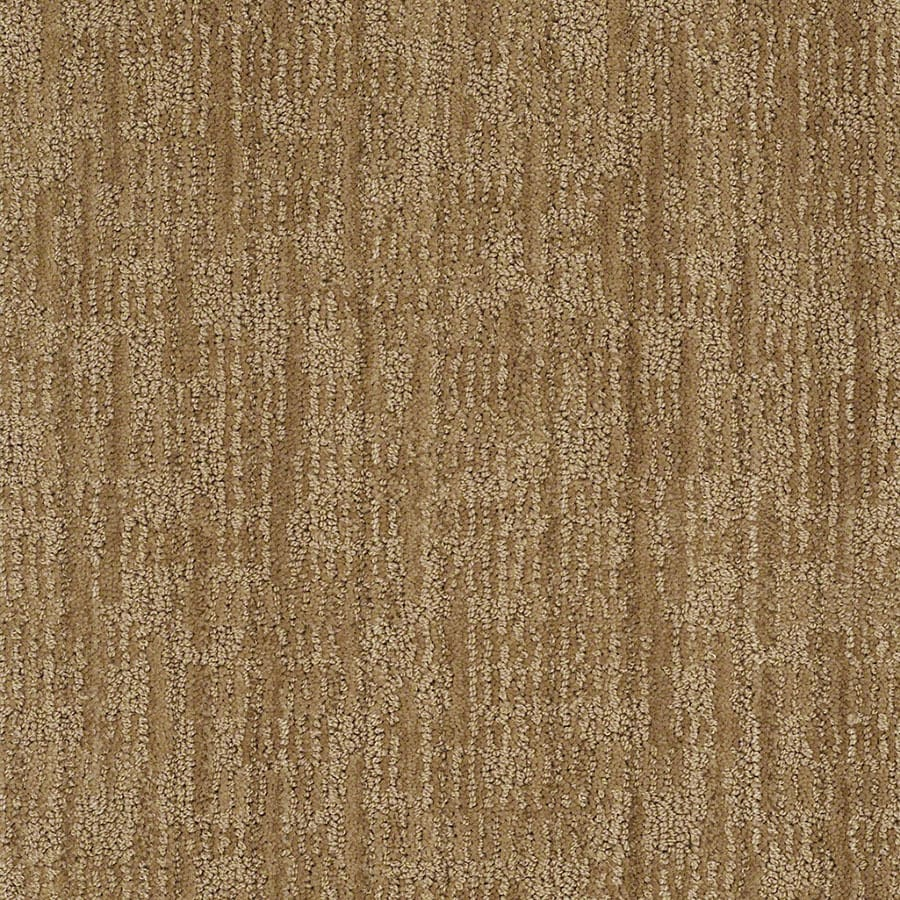 STAINMASTER Unmistakable Active Family French Horn Cut and Loop Carpet Sample