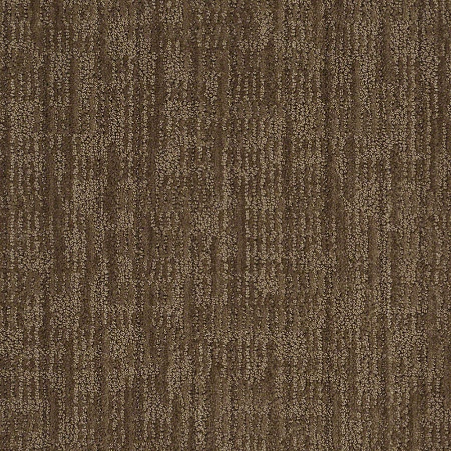 STAINMASTER Unmistakable Active Family Buffalo Trail Cut and Loop Carpet Sample