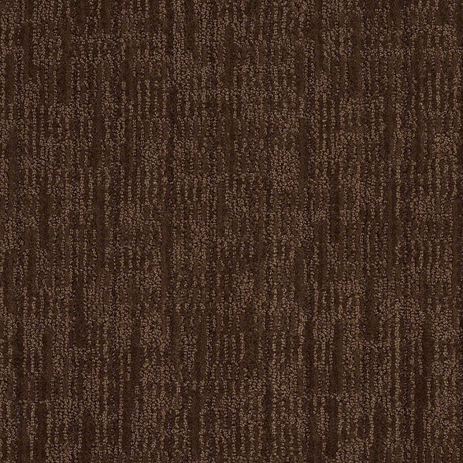 STAINMASTER Unmistakable Active Family Coffee Bean Cut and Loop Carpet Sample