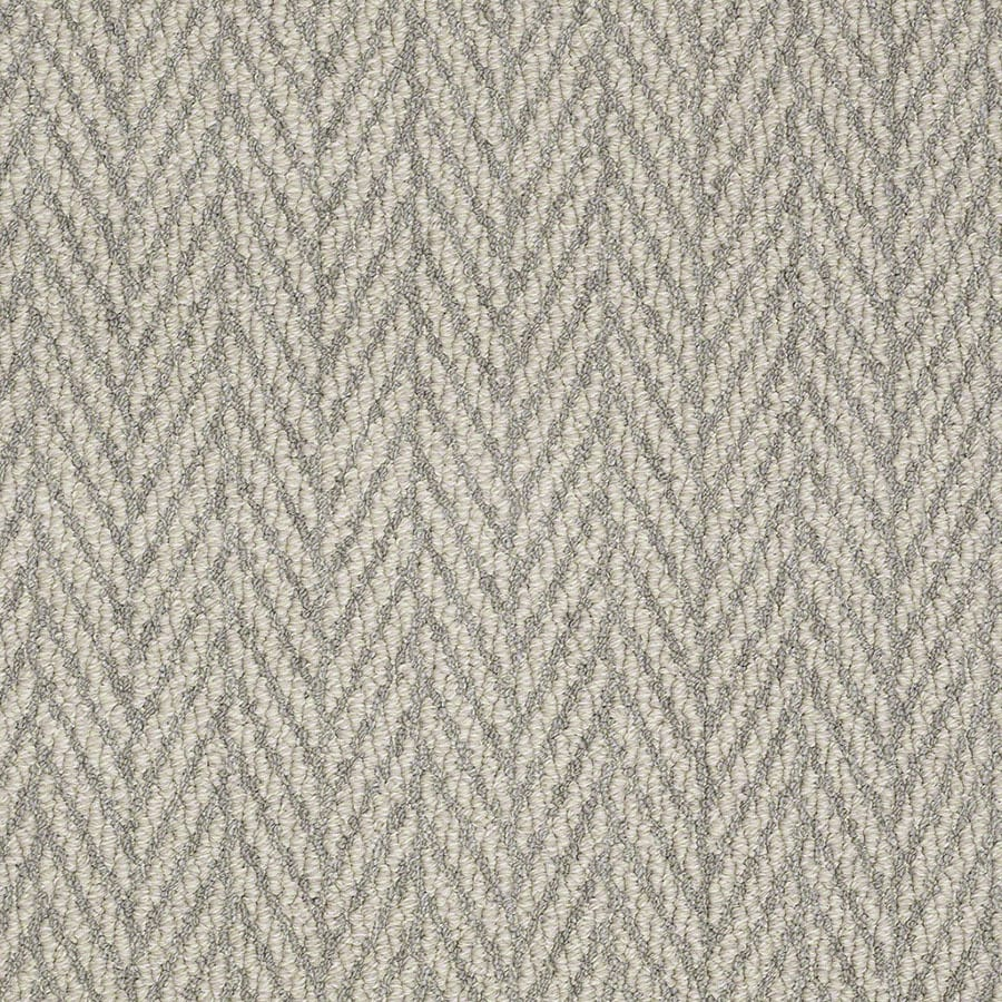 STAINMASTER Apparent Beauty Active Family Silverado Berber Carpet Sample