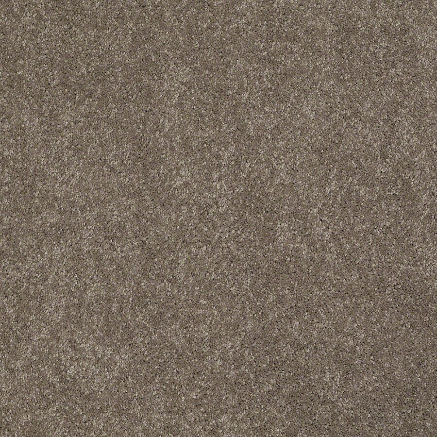 STAINMASTER Supreme Delight 2 Active Family Misty Taupe Plus Carpet Sample