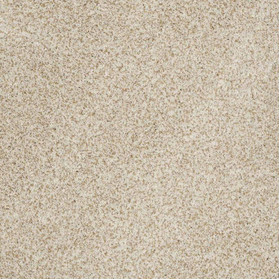 STAINMASTER Private Oasis II Trusoft Tranquility Plus Carpet Sample