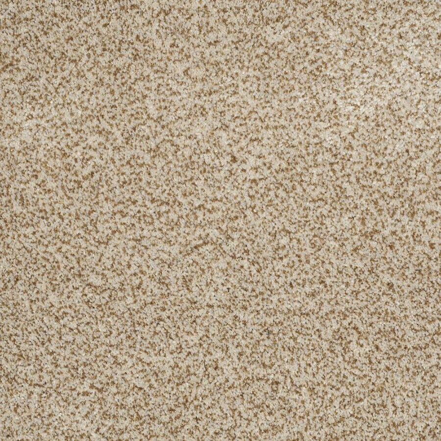 STAINMASTER Private Oasis II TruSoft Cappuccino Plus Carpet Sample