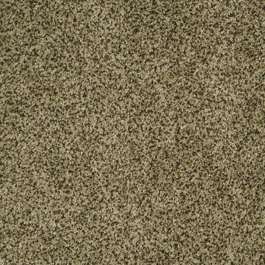 STAINMASTER Private Oasis II Trusoft Verde Plus Carpet Sample