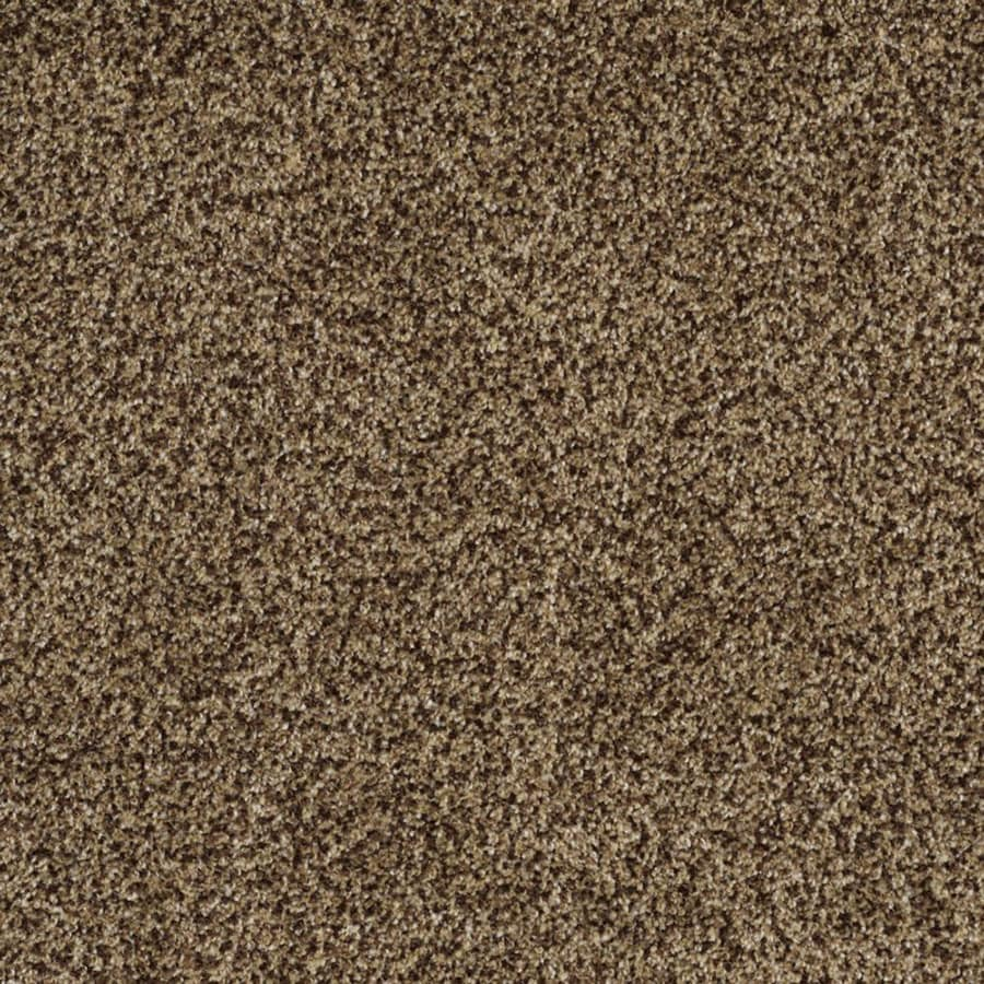 STAINMASTER Private Oasis II Trusoft Supreme Plus Carpet Sample