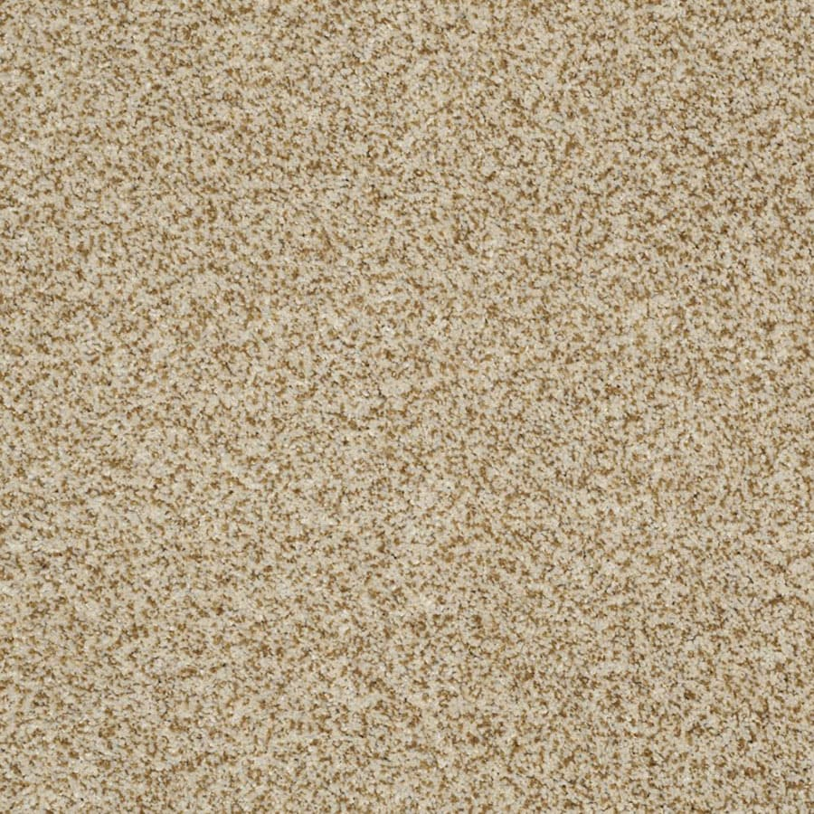 STAINMASTER Private Oasis III Trusoft Amber Plus Carpet Sample