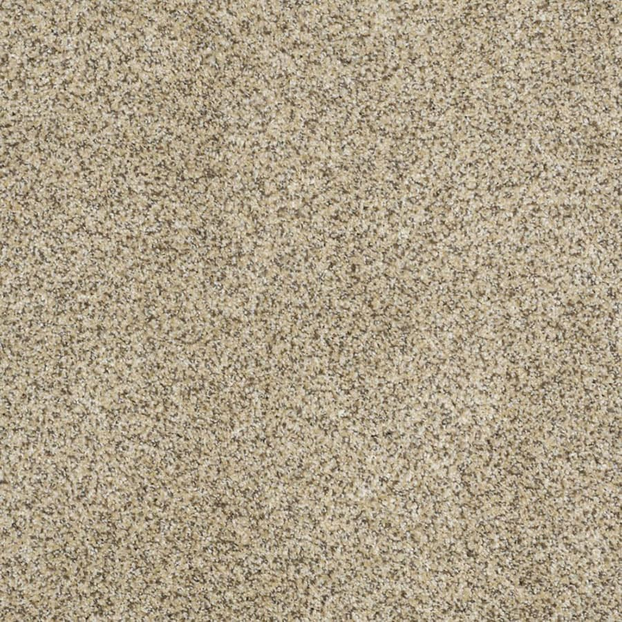 STAINMASTER Private Oasis III Trusoft Bordeaux Plus Carpet Sample