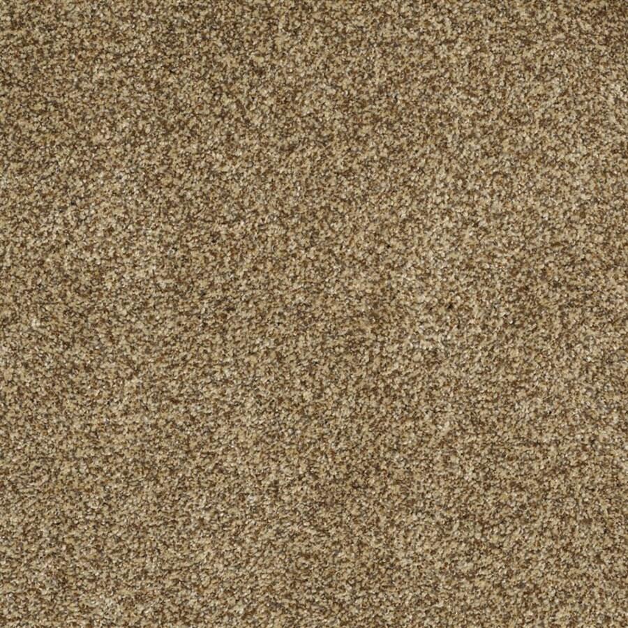 STAINMASTER Private Oasis III Trusoft Tigereye Plus Carpet Sample