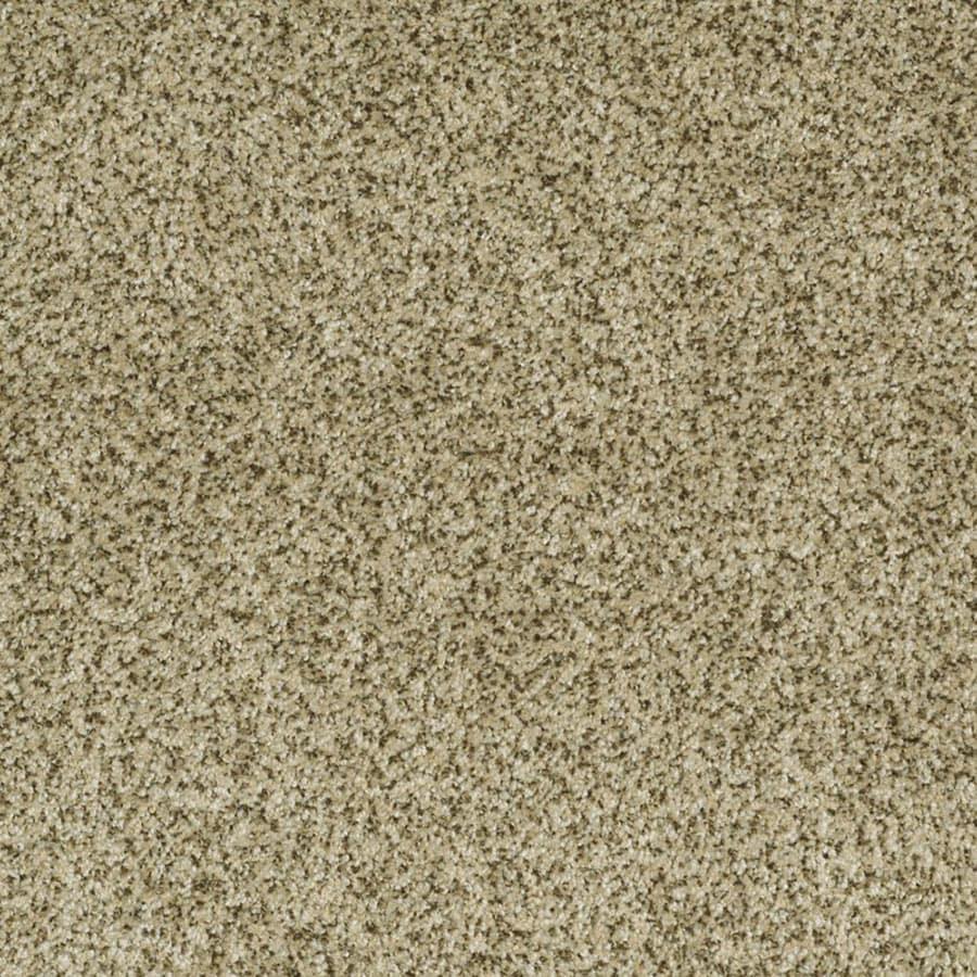 STAINMASTER Private Oasis III Trusoft Papillion Plus Carpet Sample