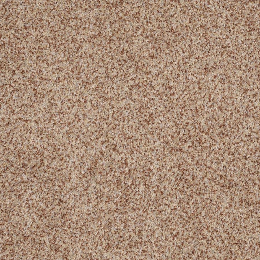 STAINMASTER Private Oasis III Trusoft Florence Plus Carpet Sample