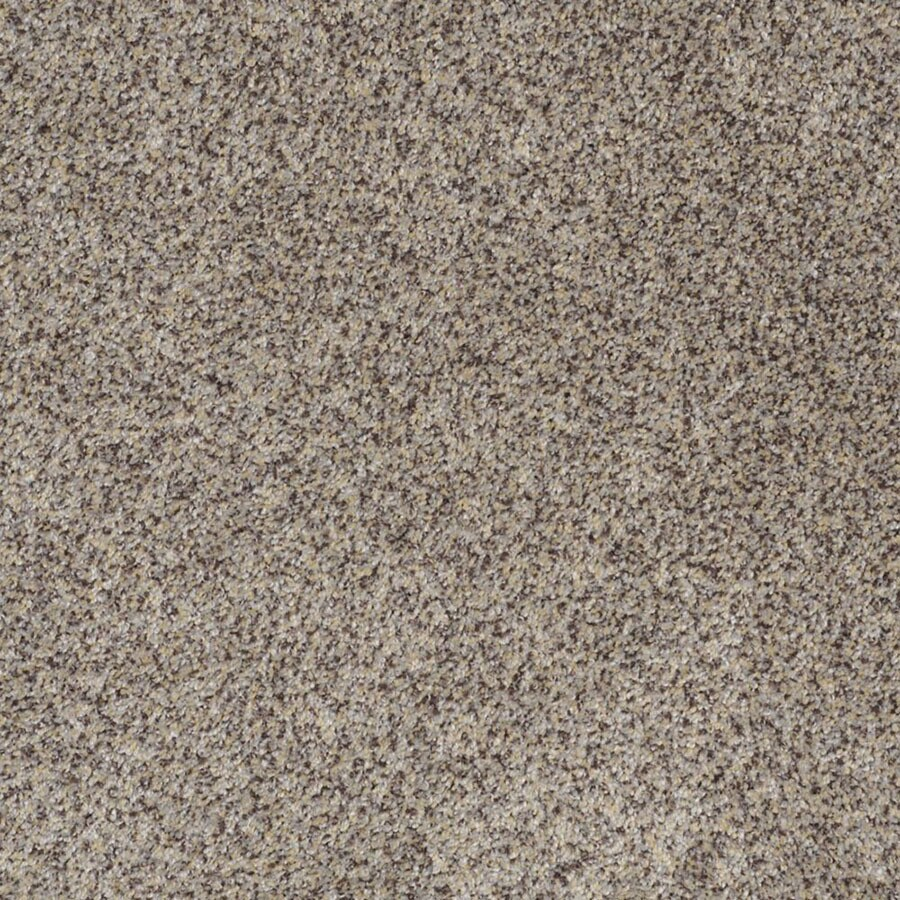 STAINMASTER Private Oasis III Trusoft Aztec Wave Plus Carpet Sample