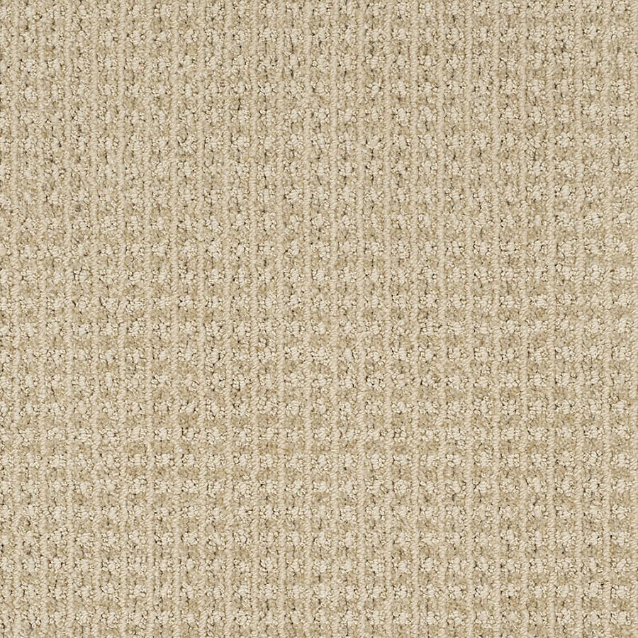 STAINMASTER Rising Star Trusoft Cozy Light Cut and Loop Carpet Sample