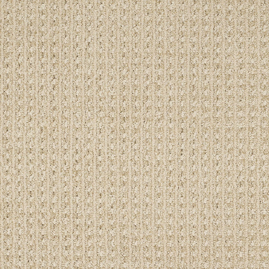 STAINMASTER Rising Star Trusoft Barely There Cut and Loop Carpet Sample
