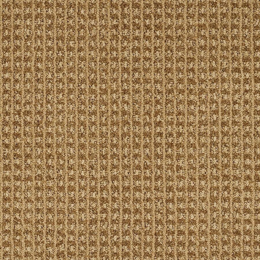 STAINMASTER Rising Star Trusoft Gold Rush Cut and Loop Carpet Sample