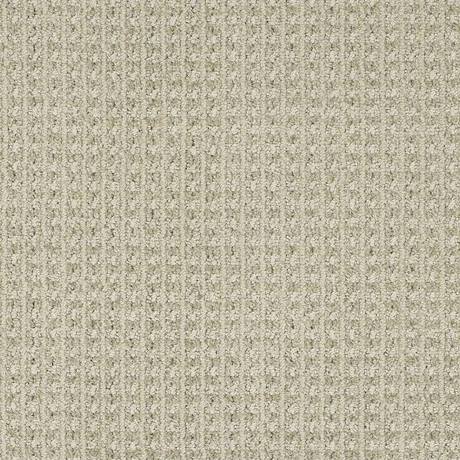 STAINMASTER Rising Star Trusoft Mild Envy Cut and Loop Carpet Sample