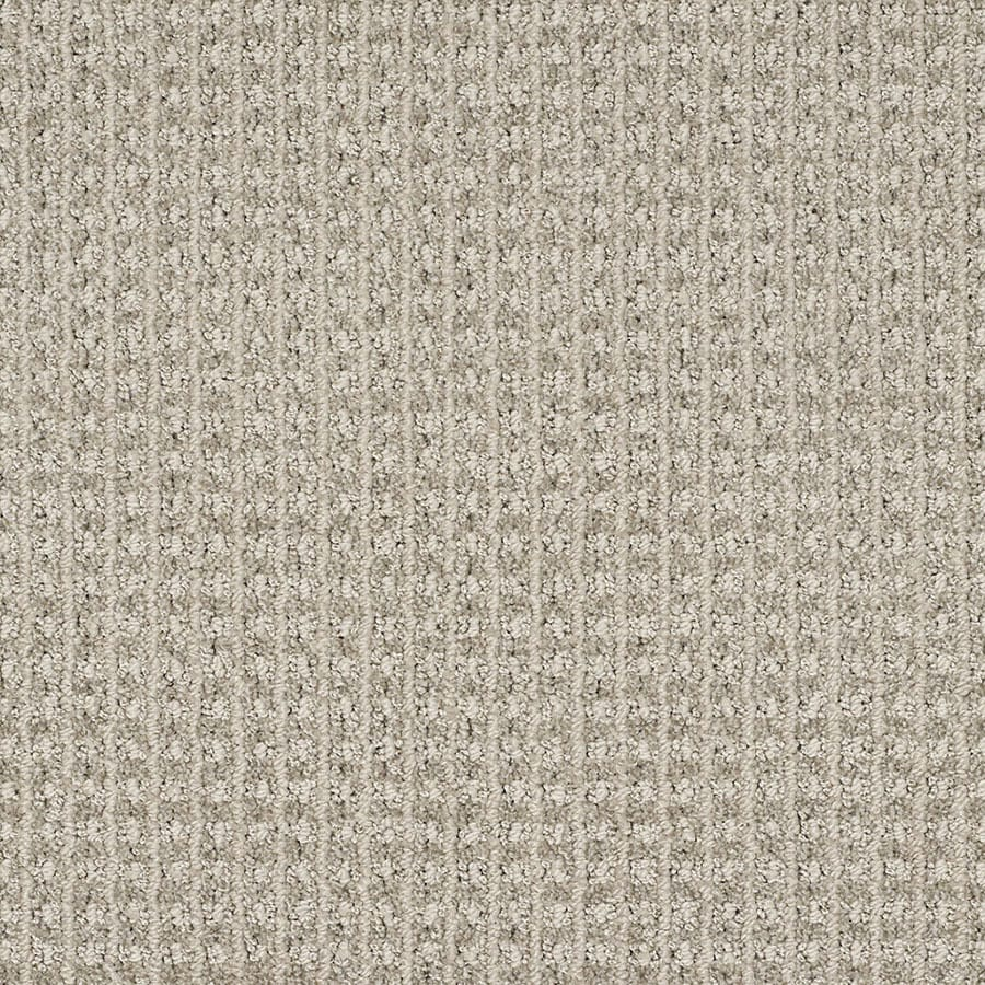 STAINMASTER Rising Star Trusoft Modern Gray Cut and Loop Carpet Sample